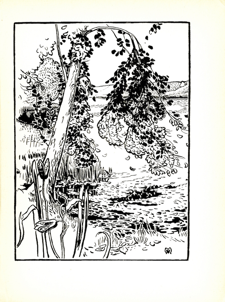 The image is of a tree that is angled towards a large body of water, likely a river. The acutely bent branches of the tree are pictured bending almost 180 degrees downwards. A few leaves are falling towards the ground and the water. The tree is surrounded by tall grass. In the bottom-left corner of the image are plants with bursting seed pods. Land can be seen across the water. The artist's mark is in the lower-right corner of the image. The image is framed within a thick border. The image is vertically displayed.