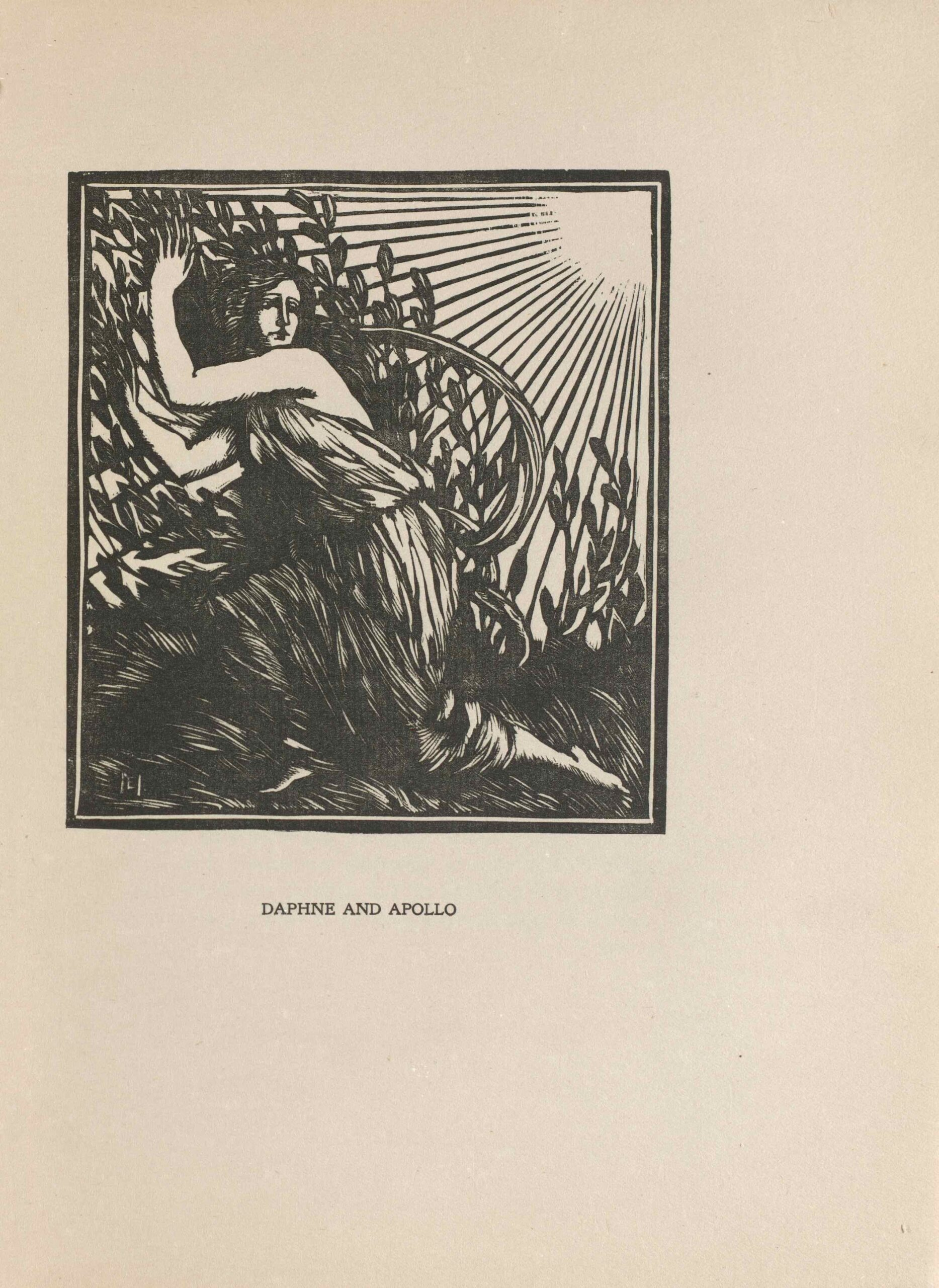 The image is in portrait orientation and is centered on the page within a rectilinear border. The image printed in black. In the foreground, a woman [the nymph, Daphne] is kneeling on a bed of long plants and is looking over her shoulder to the right. Her body remains facing the left. She is next to a field of tall plants and shrubs full of leaves, likely laurel bushes. The woman's arms and hands are held upwards around her eye-level and are reaching into the field. She is draped in a loose fabric, but her arms, neck, face, and feet are exposed. The sun is represented by a blank, circular space in the top right of the image. Sun rays are shining down onto the field and the woman, evident by the shadow on her face. According to the myth, the sun is the god Apollo.