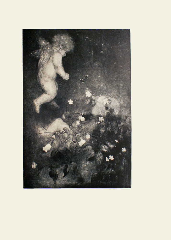 Image is of an unclothed cherub with light-coloured hair and sparkling wings The figure is floating over a patch of brambles and flowers The cherub is shown in profile with his right arm partially extended The cherub occupies the upper left quadrant The cherub is looking down at another baby who is lying amongst the bramble and flower patch Plants and flowers obscure some of the baby's body This baby is also shown in profile looking up to the angel/cherub The image is vertically displayed