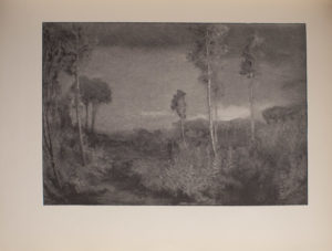 The image is of a wooded area In the foreground there are tall trees and in the background there are several other trees bushes and shrubberies There are two standing figures in the middle ground The sky is cloudless and light coloured The image is horizontally displayed