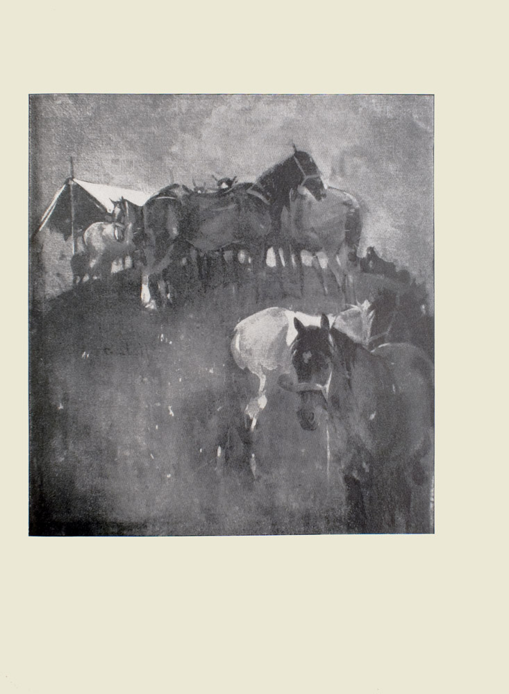 Image is of several partially harnessed horses standing on a hill In the foreground there is a dark coloured horse facing front the rear of a white horse and the head of another horse are visible behind the dark horse There are eight other horses visible to the left of these horses they are congregating at the top of the hill To the left of this group of horses is a white tarp The sky is open and light coloured The image is vertically displayed